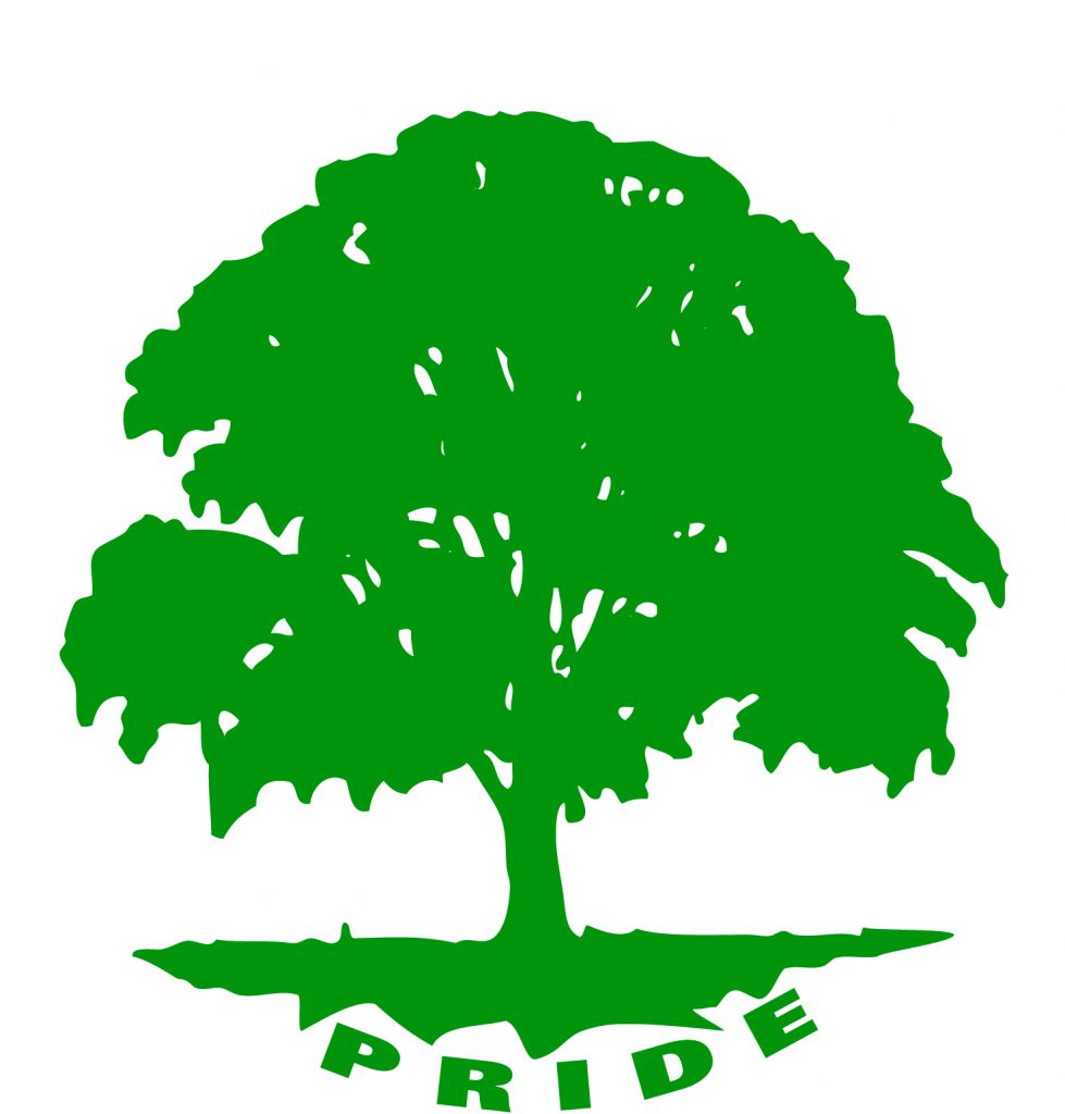 This is the F-M pride tree logo