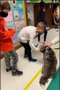 A boy and an adult pet Bowie the therapy dog as another student stands nearby.